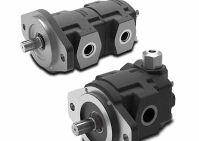 2SPW Cast Iron Gear Pump