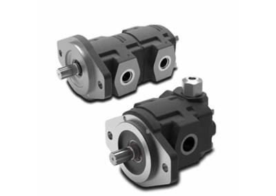 2SPW Cast Iron Gear Pump